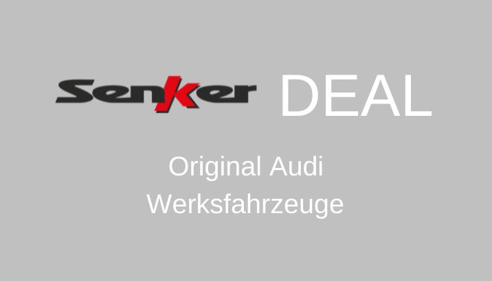 Audi Werksfahrzeuge Senker