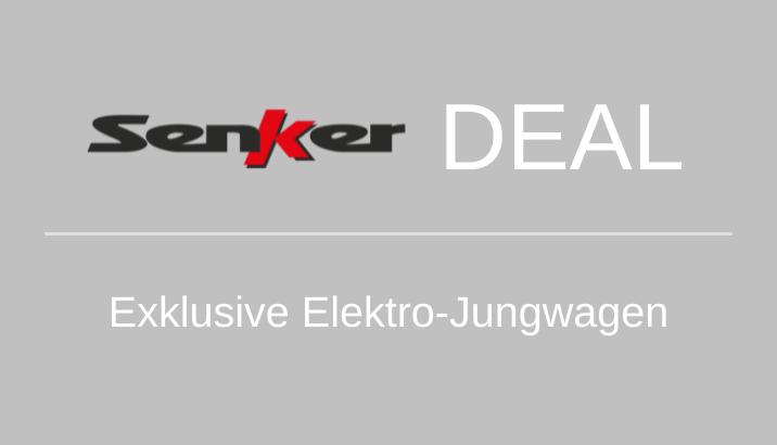 Elektro-Jungwagen